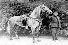 Soldier holding a horse