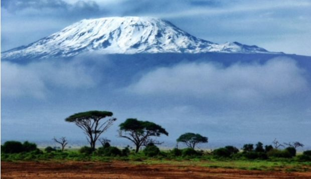 Photo of the mountain Kilimanjaro with trees in the foreground