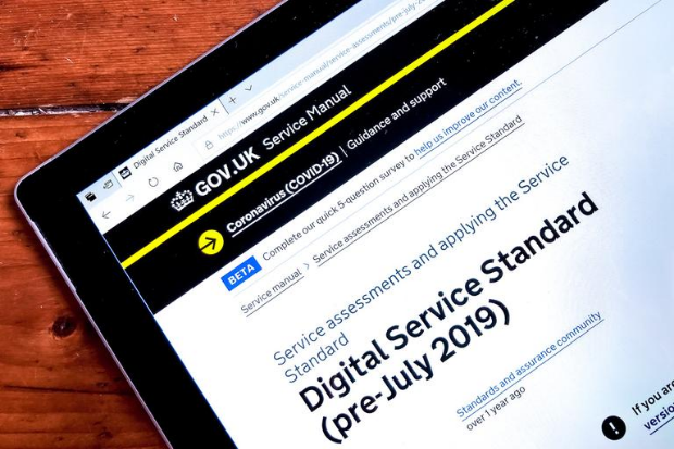 Image showing the Digital Service Standard website used as part of the assessment process